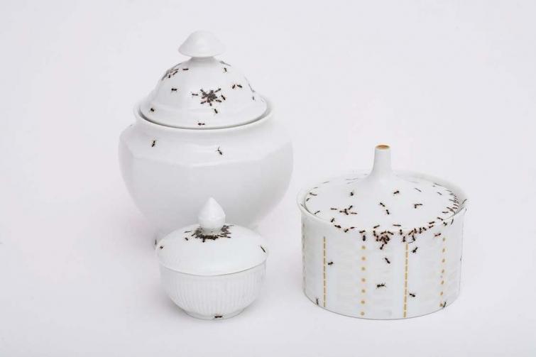посуда с реалистичными муравьями, муравьи нарисованные на посуде