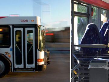 автобус, паранджа, сиденья, мусульманки,